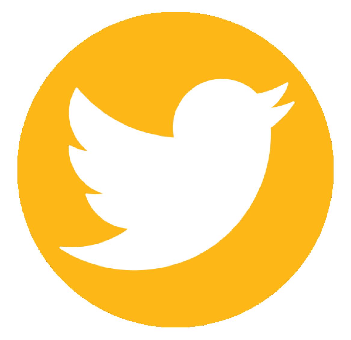 Vandana Joshi Bhatt's Profile on Twitter